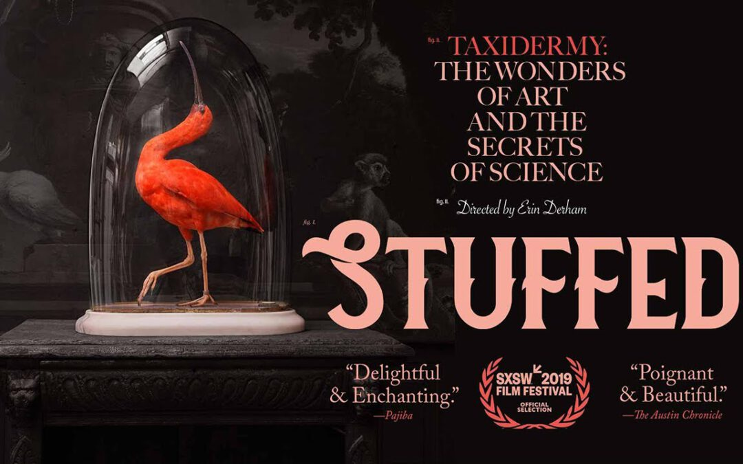 "Documentaire ""Stuffed"""
