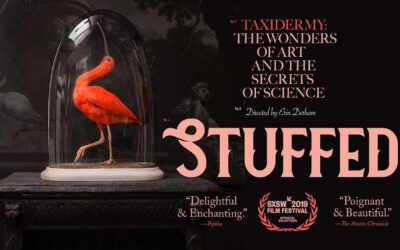"Documentaire ""Stuffed"""